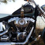 Wild Biker