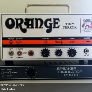 Orange Tiny Terror Head & Palmer PDI-03 Speaker Simulator