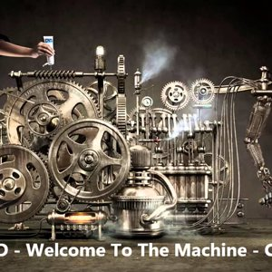AFD - Welcome To The Machine (Pink Floyd) - Cover - YouTube