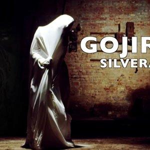 Gojira - Silvera ( 8 String COVER )