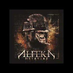 Alfeka - Dingin Kaos