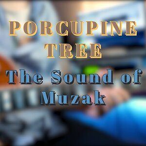 Porcupine Tree - The Sound of Muzak (Guitar Solo)