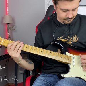 Fender USA Stratocaster with Different Styles