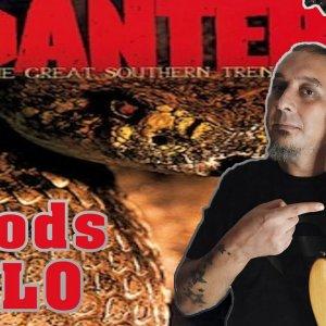 Pantera - Floods - Solo Cover