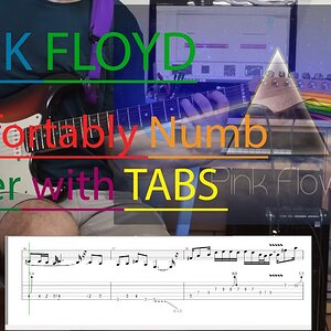 Pink Floyd Comfortably Numb Pulse Solo with tabs